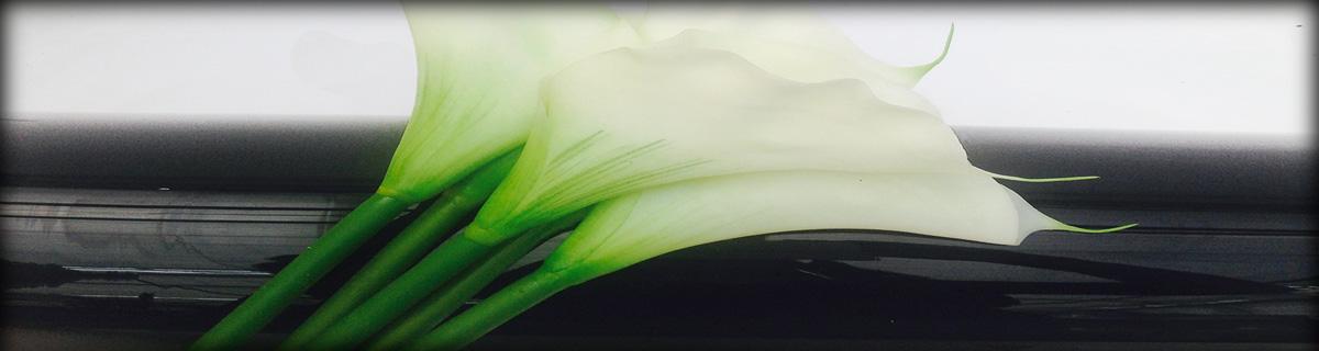 green-stems